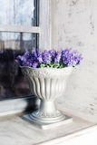 Antique vase Provence interior, ceramic, lavender, blue, gray, purple, beautiful Stock Image