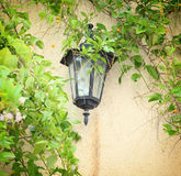 Antique Victorian Outdoor Wall Lamp surrounded by green leaves. filtered image Stock Photos