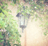 Antique Victorian Outdoor Wall Lamp surrounded by green leaves. filtered image. glitter lights background Royalty Free Stock Photos