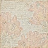 Antique vintage botanic paper background Stock Photo
