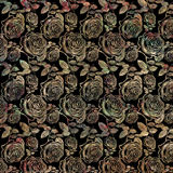 Antique Vintage Roses on black background Stock Photography
