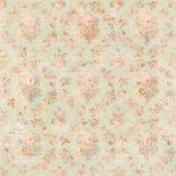 Antique Vintage style botanical pink floral roses background Royalty Free Stock Photos