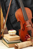 Antique violin, black silk and rose Stock Images
