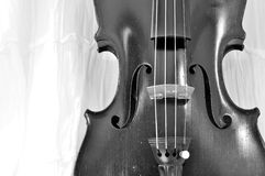 Antique violin black and white background Royalty Free Stock Image