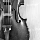 Antique violin square image, monochrome Royalty Free Stock Image