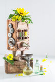 Antique virgin oil machine with sunflower and seeds Stock Photo