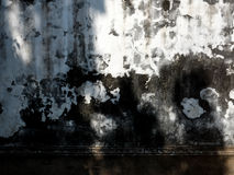 An antique wall wall grunge texture. Black and white Stock Image