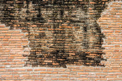 An antique wall Royalty Free Stock Images