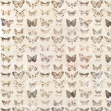 Antique watercolor butterflies illustrated patterned background Royalty Free Stock Photography