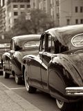 Antique Wedding Cars. Antique Motor cars parked in a row, Wedding Royalty Free Stock Photo