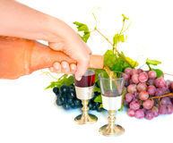 Antique wine bottle soil and grapes Royalty Free Stock Photography