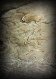 Antique wood texture Stock Image