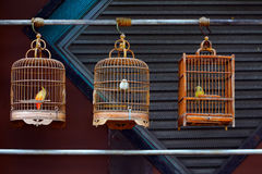 Free Antique Wooden Bird Cages Stock Photo - 91035910