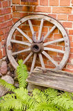 Antique wooden carriage wheel. Antique wooden carriage wheel with binding of metal and horseshoe on it. Red brick wall. Fern leaves Royalty Free Stock Photo
