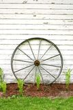 Antique Wooden Wagon Wheel on Rustic White Background Stock Photo