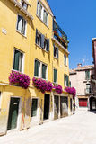 Antique yellow building with terrace with pink blooming petunia flowers  in Venezia. Antique yellow house with balcony with pink blooming petunia flowers  in Royalty Free Stock Image