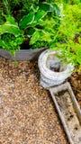 Antique zinc planter in garden. Stock Photos