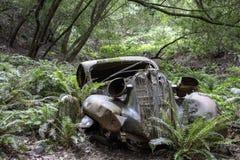 Antiquiteit gesloopte auto in bos stock foto