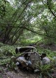 Antiquiteit gesloopte auto in bos stock fotografie