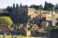 Antiquiteit van het forumruïnes van Rome Italië roman Stock Afbeelding