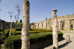 antiquites roman pompei royaltyfria foton