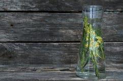 Antirrhinum flower essential oil. Herbal medicine. Antirrhinum flower essential oil on wooden background. Herbal medicine. Naturopathy stock photography