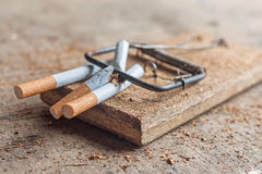 Antismoking background with broken cigarettes in a trap Stock Images