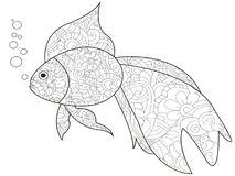 Antistress Coloring Book is a goldfish. Black lines, white background raster. Illustration Stock Illustration