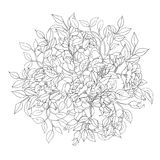Antistress coloring of flowers and leaves. Vector antistress coloring of flowers and leaves Royalty Free Stock Image