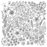 Antistress coloring page for adults vector illustration