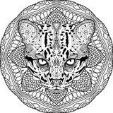 Antistress färben Starke Wildkatze wird eigenhändig mit Tinte gezeichnet Zendoodle Stockfotos