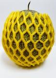 Antiurto avvolto melone Immagine Stock Libera da Diritti