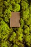 Antivari del sapone della tisana Fotografia Stock Libera da Diritti