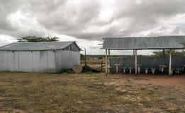 Antivari nel Kenya Fotografia Stock Libera da Diritti