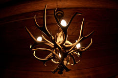 Antler Chandelier Royalty Free Stock Image