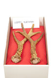 Antlers in box Stock Photos