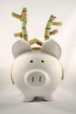 antlers pig wearing Στοκ εικόνες με δικαίωμα ελεύθερης χρήσης