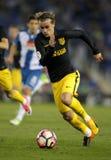 Antoine Griezmann d'Atletico De Madrid Photo stock