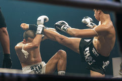 Antoine Pinto of France and Luca Novello of Italy in Thai Fight 2013. Stock Photos