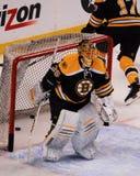 Anton Khudobin, Boston Bruins Στοκ Φωτογραφία