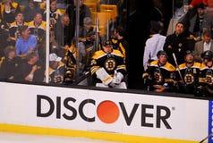 Anton Khudobin, Boston Bruins Στοκ Εικόνες