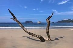 antonio海滩肋前缘manuel rica 免版税库存图片