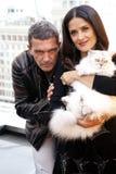 Antonio Banderas e Salma Hayek immagine stock