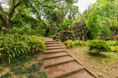 Antonio Borges Botanical Garden in Ponta Delgada immagine stock