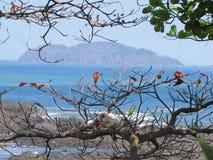 Antonio Costa Rica manual Imagen de archivo libre de regalías