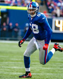 Antonio Pierce, New York Giants Στοκ φωτογραφία με δικαίωμα ελεύθερης χρήσης