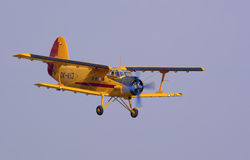2 Antonov Obraz Royalty Free