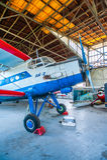 Antonov An-2 på skärm Arkivbilder