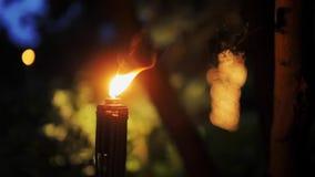 Antorcha ardiendo con una llama anaranjada brillante en la noche en un jardín o un parque almacen de video