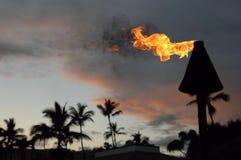 Antorcha de Hawaii Imágenes de archivo libres de regalías